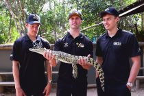 MSR trio check out Townsville's wildlife