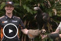 Le Brocq shifts eagle-eye focus to Gold Coast