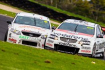 Strong V8 Touring Car grid for Phillip Island