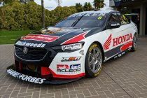Honda backing for Percat Commodore