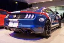 Eight Mustangs the target for 2019
