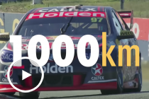 Red Bull: Bathurst by the numbers