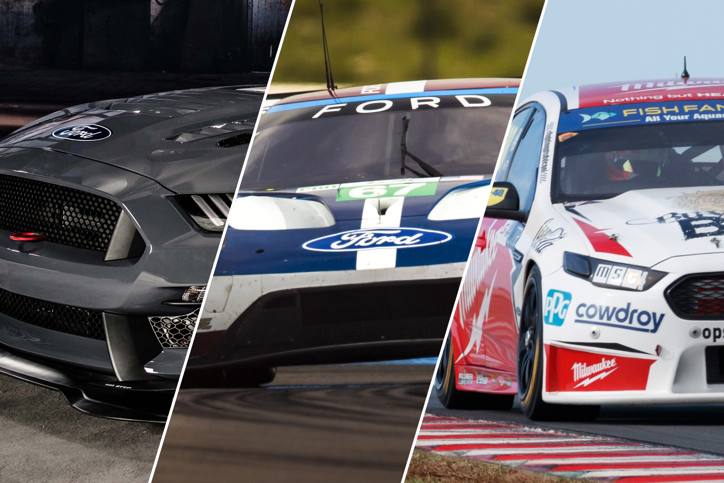Falcon to race mustang and gt at bathurst